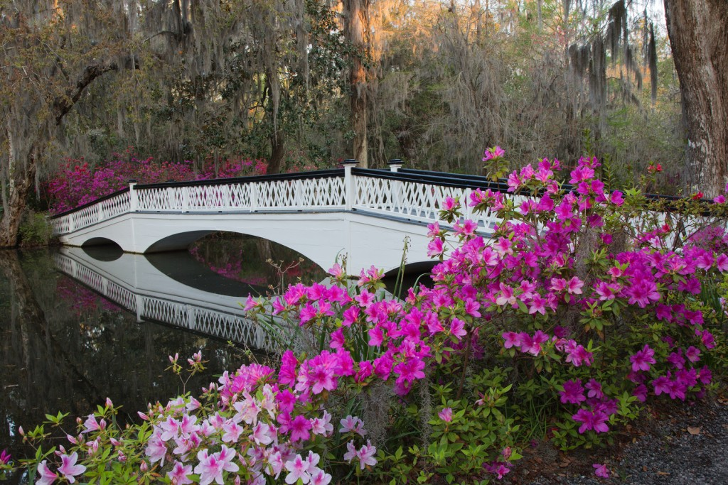 Coconut Club Vacations Celebrates National Gardening Week with a Review of 5 Must-See English Gardens