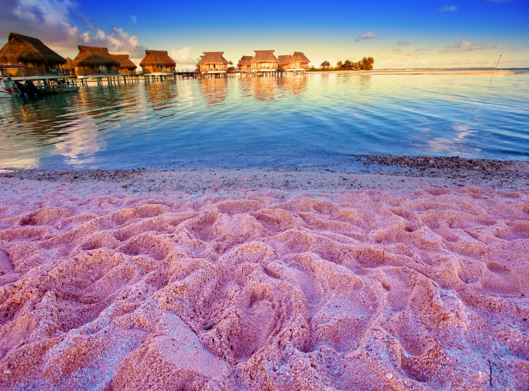 Colored sand beaches around the globe coconut club vacations for Pink sand beaches bahamas