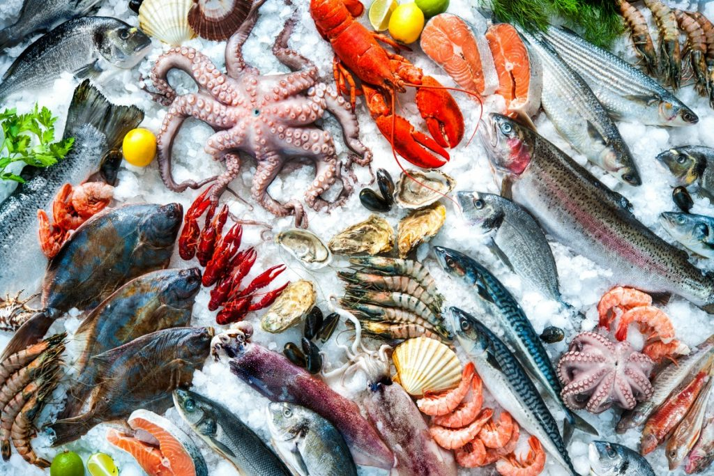 Seafood Festivals Across Massachusetts